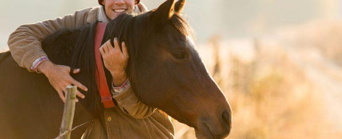 paardencoaching leiderschap coaching leiderschapsontwikkeling
